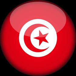 फ़िडुलिंक ट्यूनीशिया निर्माण कंपनी ऑनलाइन ट्यूनीशिया में कंपनी बनाएं ऑनलाइन फ़िडुलिंक