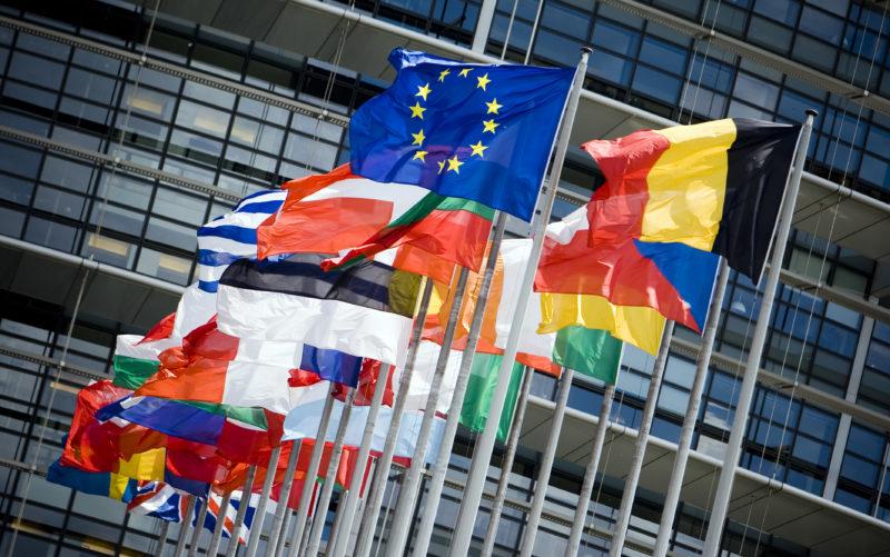 국제 기업 온라인 fidulink 생성 온라인 기업 생성 온라인 해외 기업 생성
