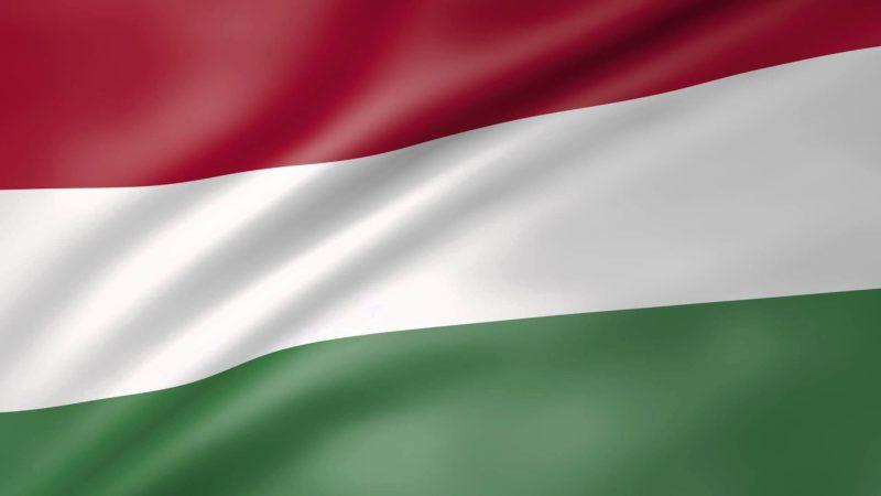 हंगरी में एक कंपनी बनाएं हंगरी में एक कंपनी शुरू करें फिडुलिंक के साथ हंगरी में एक कंपनी बनाएं