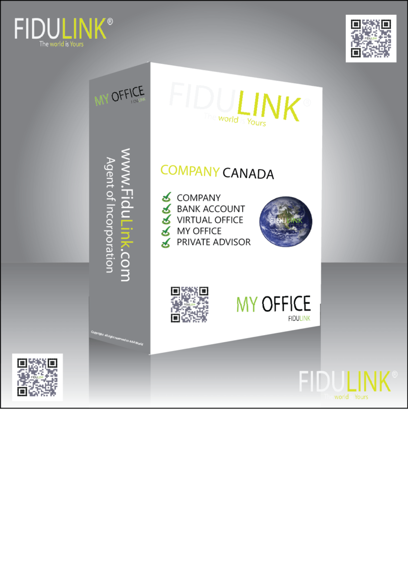 online společnost fidulink