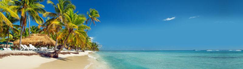 डोमिनिकन रिपब्लिक कंपनी बनाएं डोमिनिकन रिपब्लिक क्रिएशन डोमिनिकन रिपब्लिक कंपनी