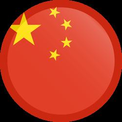 CNY SUXYS FLAG