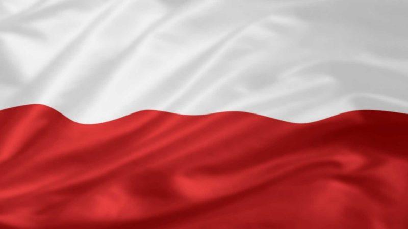 पोलैंड में कंपनी का निर्माण पोलैंड में कंपनी का निर्माण कंपनी फिडुलिंक का निर्माण करती है