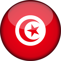 fidulink тунис онлайн компания создание создать компанию в тунисе онлайн fidulink