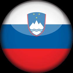 Slovenie Fidulink создание онлайн-компании